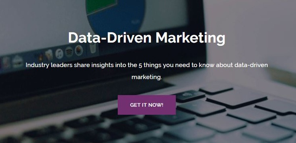 Data-Driven Marketing Guide