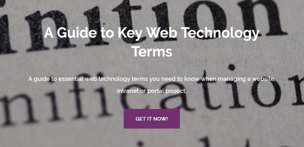 Key Web Technology Terms Guide
