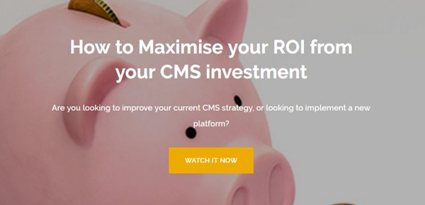 Maximise ROI from CMS Investment Webinar